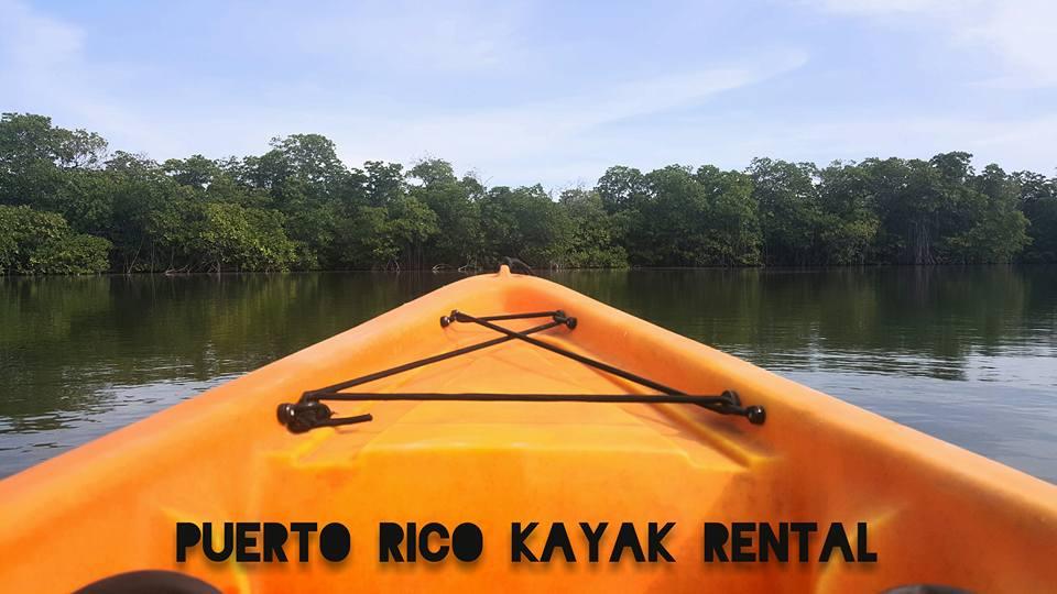Bio Bay by Puerto Rico Kayak Rental, Camino Puerto Viejo, La parguera, Lajas, PR, 00667, Puerto Rico